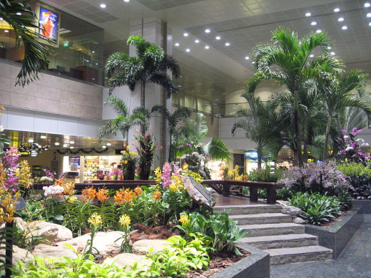 Terminal 2's relaxing transit area at Singapore's Changi International Airport