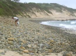 Tony beachcombing.