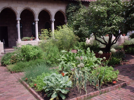 Medieval Herb Garden at The Cloisters, New York, NY
