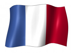 Stem-Changing and Spelling Change French Verbs