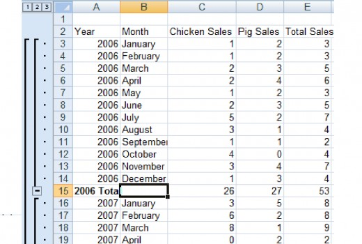 Subtotals in Excel 2007.