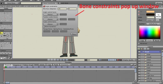 Bone Constraints