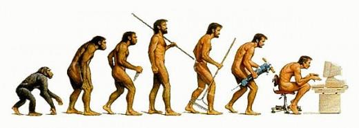 How we've evolved?