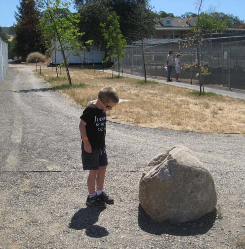 I took my grandson to a wild animal preserve and wouldn't you know, he was more fascinated by the dead bug on the rock than he was by the tigers!