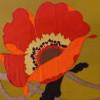 brownella profile image