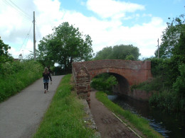 One of the many bridges, over towpath and canal; popular for walkers and cyclists