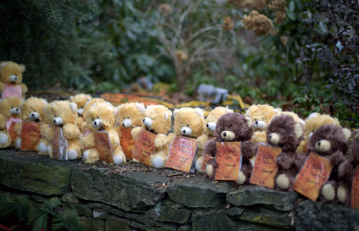 At a sidewalk Memorial, teddy bears, each representing a victim of the Sandy Hook Elementary School shooting, Newtown, Connecticut