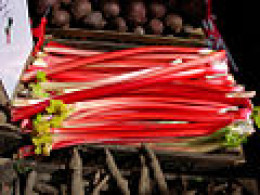 Rhubarb - do it yourself highlights for dark hair