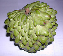 Atemoya, (Annona × atemoya), is a hybrid of two fruits – the sugar-apple (Annona squamosa) and the cherimoya (A. cherimola)