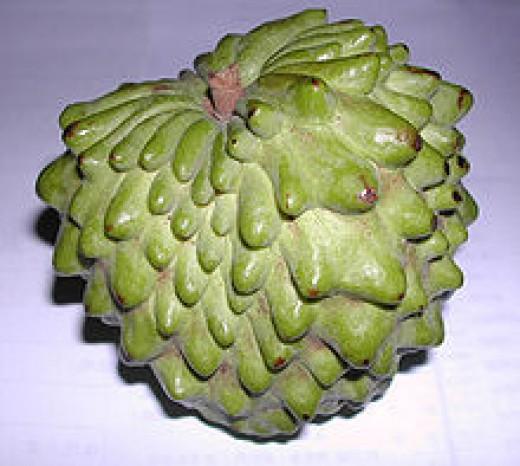 Atemoya, (Annona × atemoya), is a hybrid of two fruits – the sugar-apple (Annona squamosa) and the cherimoya (A. cherimola)