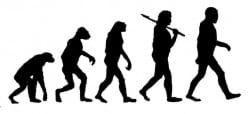 Good Night Evolution