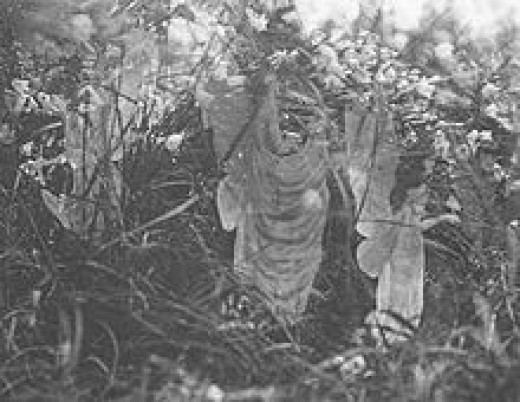 The fifth photograph, which Griffiths insisted was genuine.