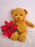 Soft toys are an ideal gift for Valentine's day but buyer beware they may get more cuddles than you do.