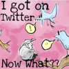 I Created a Twitter Account, Now What?
