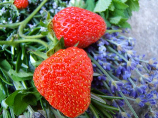 Strawberries are ideal for salad, desserts and also for making your own beauty products.