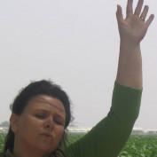 Morningwings profile image