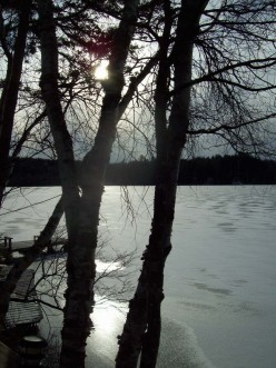 A seeker of all things  water......
