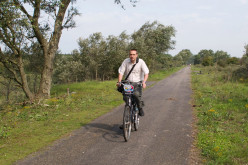 Cycling in the Netherlands: Amsterdam, Haarlem & Leiden