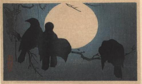 Crow Divination