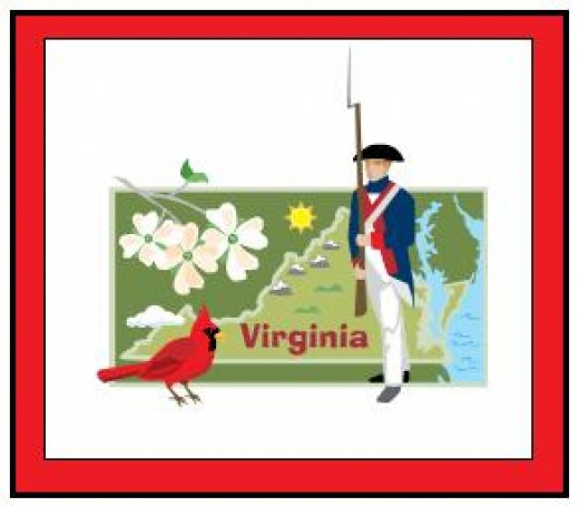 VIrginia's laws for purchasing firearms tend to be similar to gun laws in other States.