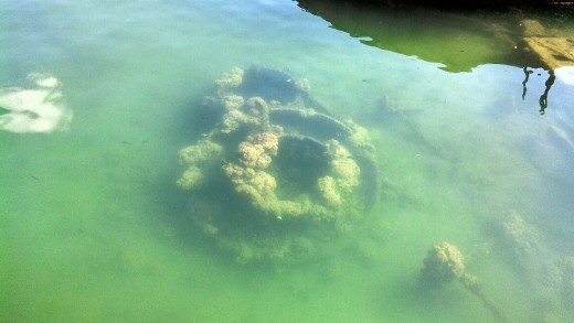 Submerged remains of the USS Arizona at the Pearl Harbor Memorial