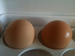 If one hen gives 2 eggs in 2 days then 5 hens will give how many eggs in 6 days ?