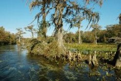 Canoeing Tips for the Perdido River near Pensacola, Florida