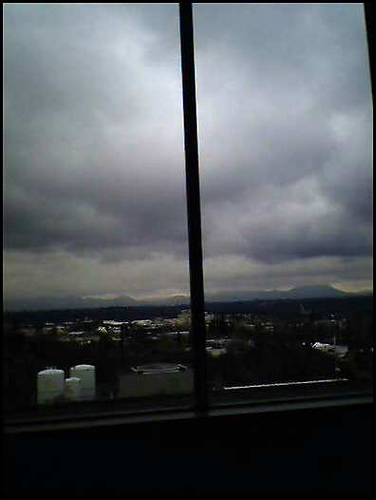 ..Looking out the hospital window
