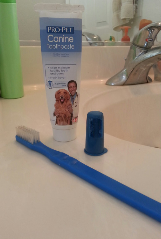 Specialized doggie-safe toothbrush, toothpaste, and handy finger-brush