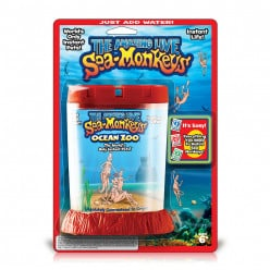 How to Raise Sea Monkeys or Brine Shrimp