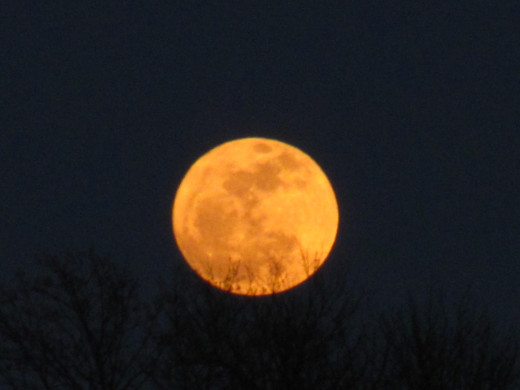 This bright orange huge Moon rose after the sun had already set.