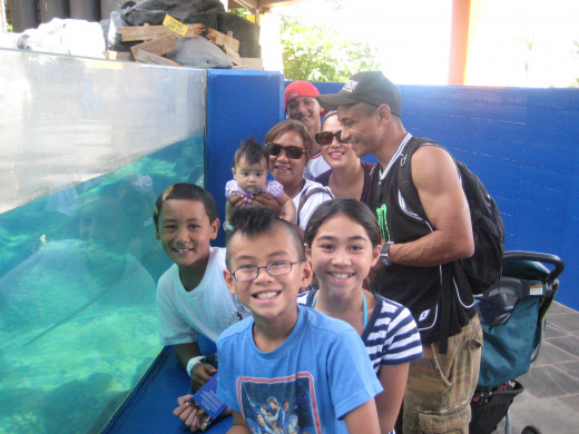 Hawaii's Sea Life Park