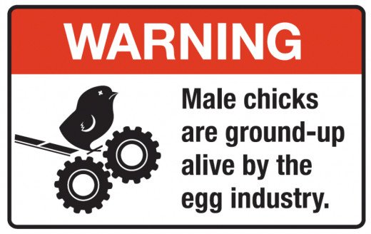 This should be on every egg carton.