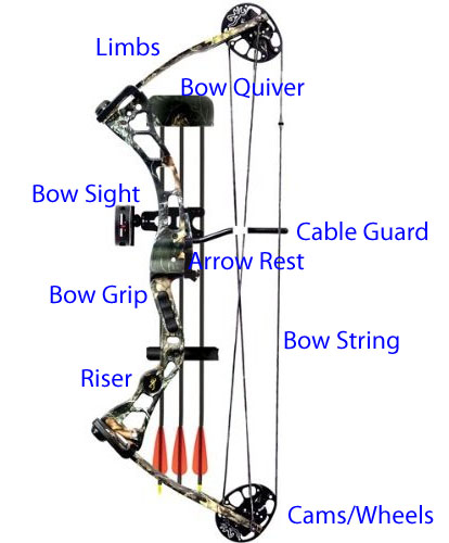 As you can see this is a compound bow. It is more complex and requires more knowledge to shoot than a normal bow.
