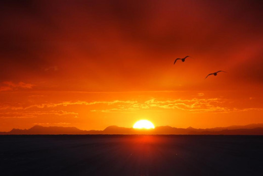 Sunrise @ Whangaparoa, Auckland by Jovanni Cid