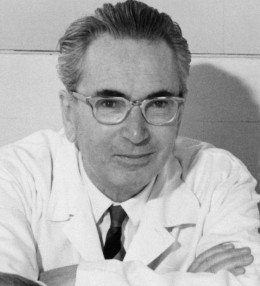 Victor Frankl survived the Nazi concentration camps and went on to teach people how to create meaning and happiness in our lives - no matter what happens to us.
