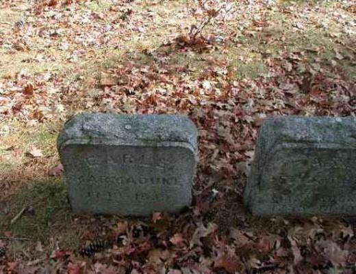 Marmaduke Earle's grave