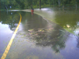 If the water is moving fast enough it can wash cars right off the road.