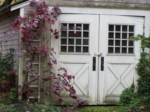 The car was one of very few that would fit through the narrow doors of the detached garage on the side of the house, she had measured carefully.
