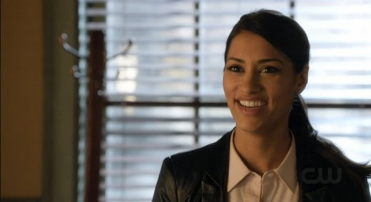 Janina Gavankar as sexy vice cop McKenna Hall.