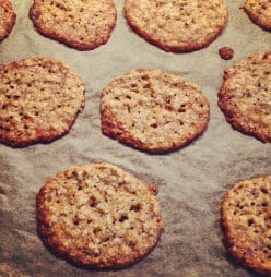 Swedish Oatmeal Wafers Recipe