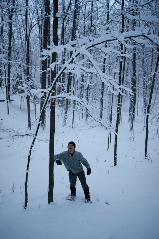 (click on the next thumbnail to the upper left of this photo) And when you are in the woods....