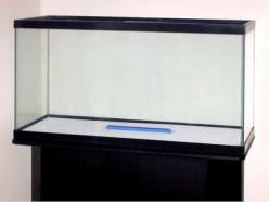 How to Buy a Used Aquarium