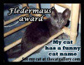 Funny Cat Names Award!