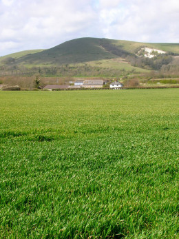 Comp Farm. In the background a cloud casts a shadow over Mount Caburn.