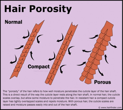 What porous hair looks like