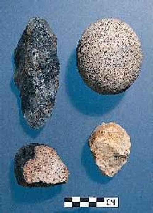 Monte Verde artifacts