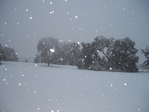 2011 snow in the park