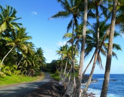 Hidden Hawaii: The Enchanted Red Road in Puna on the Big Island