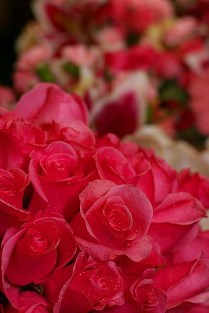 Valentines Wedding Flowers